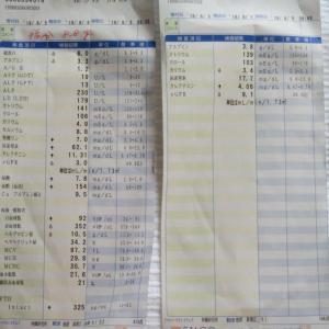 8/12の透析と月初の血液検査