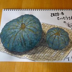 野菜スケッチ2020