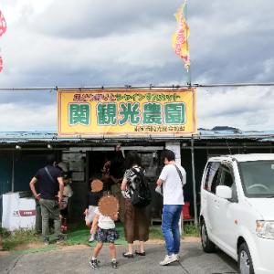 関観光農園でシャインマスカット狩り@信州上田