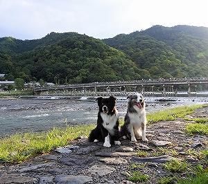夕涼み (嵐山)