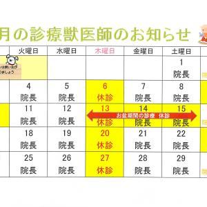 8」月の診療予定表