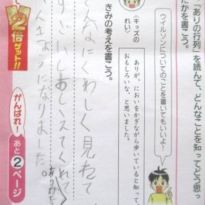妹ちゃん・チャレンジ~ありの行列と、3年生もバッチリ!