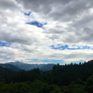 新 緑仙の日々是好日(台風19号の爪痕)