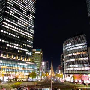 新 緑仙の日々是好日(名古屋駅前のクリスマスツリー)