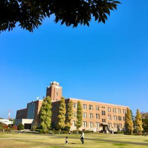 新 緑仙の日々是好日(水戸三の丸庁舎を歩く)
