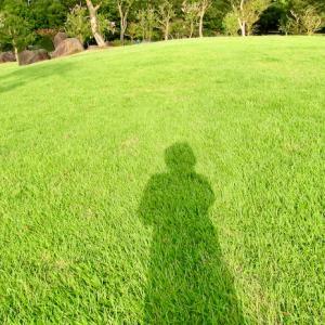 新 緑仙の日々是好日(県境の公園)