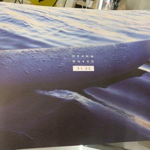 ORANM BOARDS2021配布用カタログ届きました