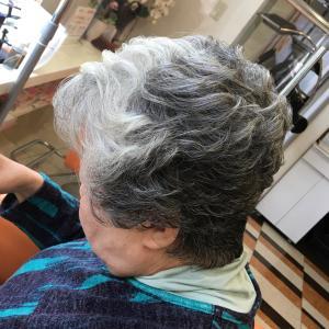 髪の毛の真実「髪の毛は死んでいる!」は、嘘だった!!