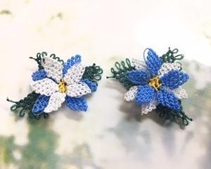 キルピクリアダリアという花が、一体何か分からないまま