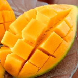 マンゴー大好き
