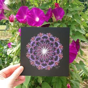 庭に咲く『あさがお』の曼荼羅アート?