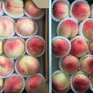 桃の贈り物とフード優待、