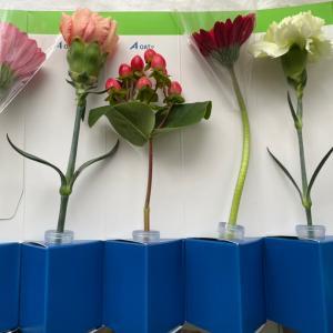 4月優待取得と「OATアグリオ」よりお花優待♪
