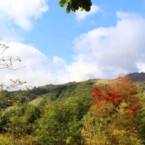 白馬栂池自然園へ<GOTOトラベル>