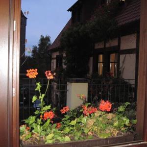 秋のドイツ ローデンブルグ