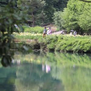 平家谷 菖蒲園へ