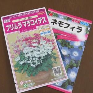 ◎買ってきた花種と球根&☆きょうの庭花・庭バラ