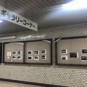 写真とコトノハ展Vol.12に参加しています^^