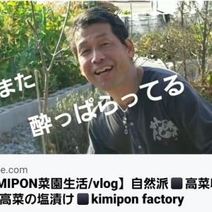 【日記20200304】高菜を収穫し、《高菜の塩漬け》を作ってみました🎶【KimiponFactory】