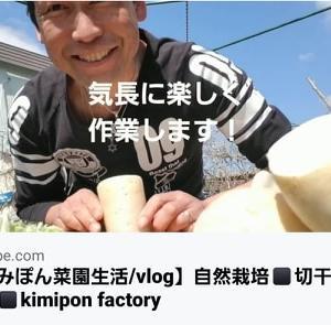 【日記20200308】残った大根で《切干大根》を作ってみました❣【KimiponFactory】