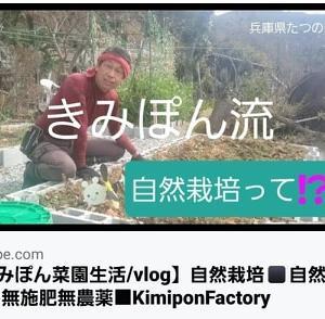 【日記20200309】無施肥無農薬の自然栽培の定義❣【KimiponFactory】
