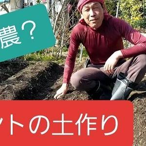 【日記20200314】2016に菜園を始めて4年目の現状❣【KimiponFactory】