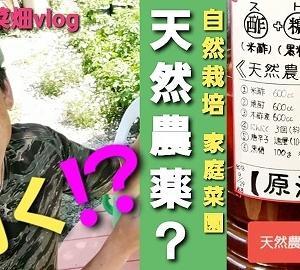 【日記20200529】天然農薬?酢糖酎(ストチュ-)【KimiponFactory】