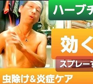 【日記20200724】雨🌧️続きで野菜が不作ですね❣【KimiponFactory】