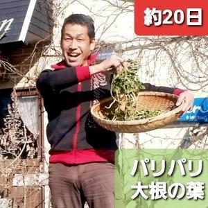 【ポタジェ商品20210121】天日乾燥の大根の葉っぱ❣出来ました❣【KimiponFactory】