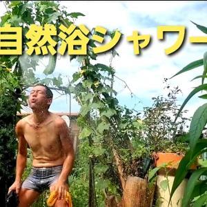 【日記20210827/32℃】恒例《自然浴シャワー🚿#10》❣【きみぽんひろば。】
