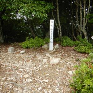 花咲山、行者山-2021-06-20