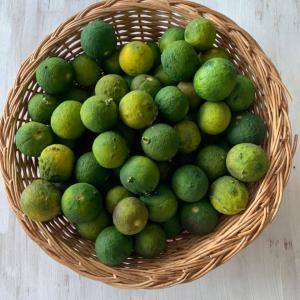 ⭐️手作り柚子胡椒