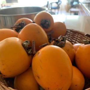 ⭐️干し柿作り始めました