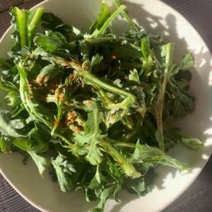 ⭐️春菊を生で食べるとすごく美味しい!!春菊サラダ(Youtubeにアップしました)