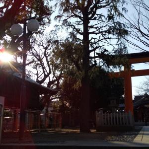 旗岡八幡神社【東京都品川区旗の台】