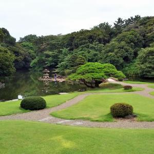 新宿御苑の玉藻池