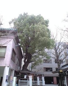 【追記あり】東京メトロ・都営地下鉄沿線の神社特集☆