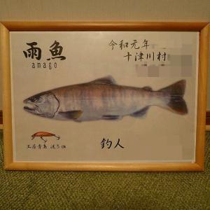 尺アマゴ 自作デジタル魚拓ほぼ完成?