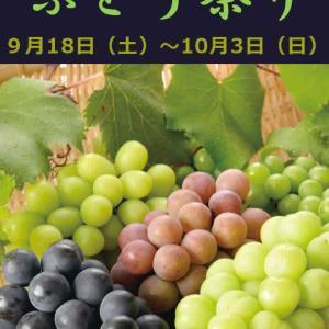 20201 『おかやま ぶどう祭り』9/18(土)から始まるよ!! の巻