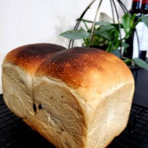 ひさびさに焼くパン