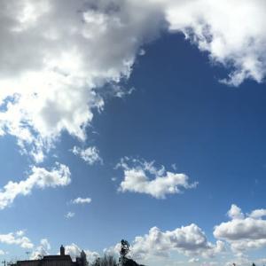 晴れても 肌寒さを感じる日。。