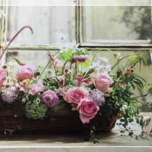 5月は 薔薇の季節🌹