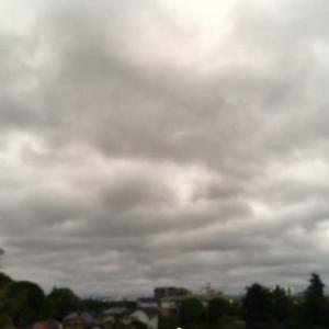 きょうも一日曇天で~す(ノ_・。)