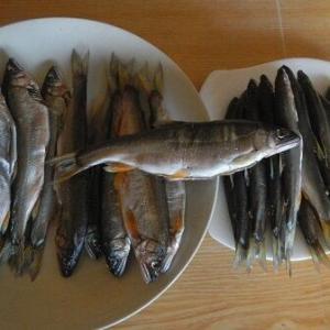 昆布を巻くことで最高の味になった鮎の甘露煮