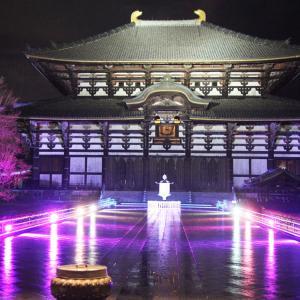 奈良市 なら瑠璃絵 5