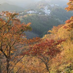 吉野山 上千本 紅葉 夕景