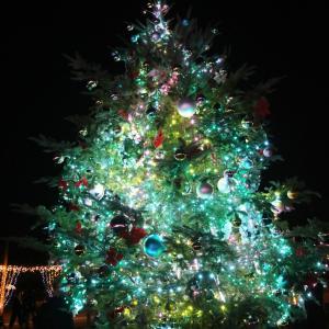 広陵町 馬見丘陵公園 クリスマスイルミネーション