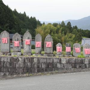 桜井市 高家(たいえ) 石仏 マンネングサ