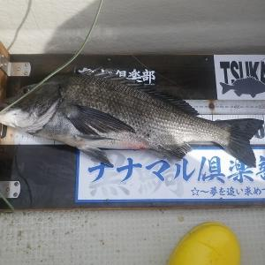 8月1日~2日愛媛 チヌ釣り