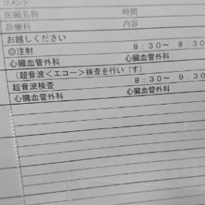 2回目の経食道心エコー